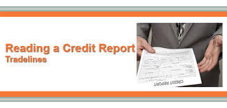 Non Traditional Credit Tradelines