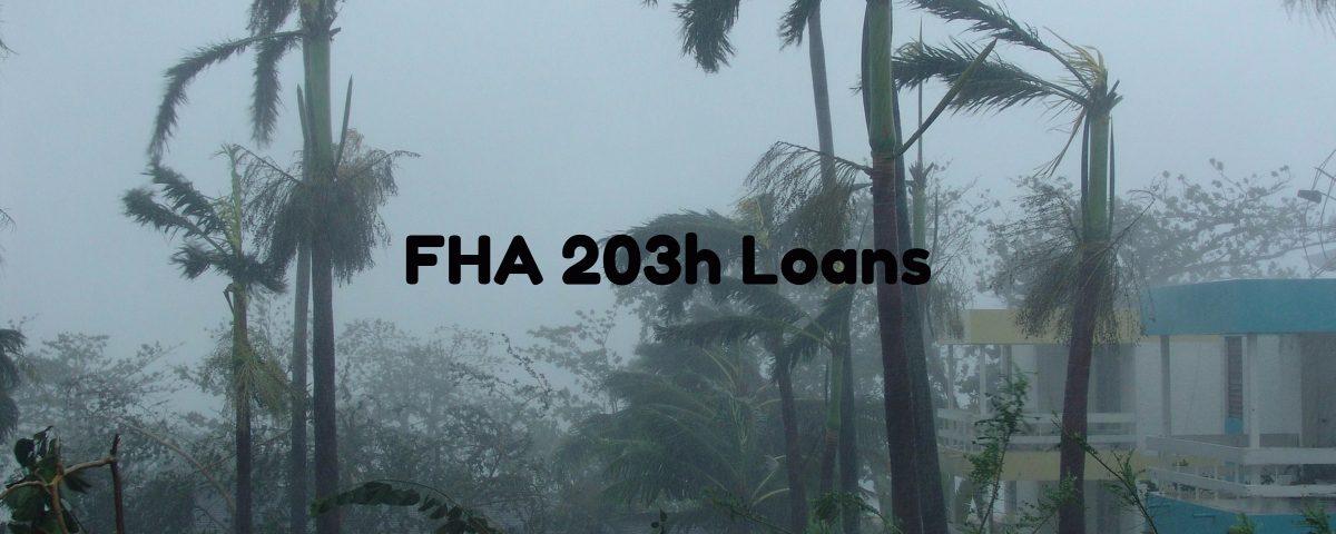 FHA 203h Loans