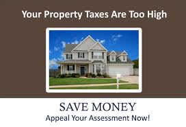 How Can I Reduce My Property Taxes?