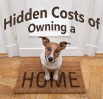 Advantages And Benefits Of Home Ownership Versus Renting