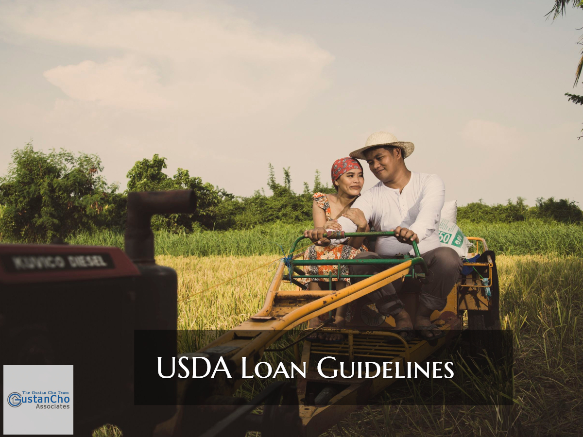 USDA Loan Guidelines For Home Buyers In Rural Areas