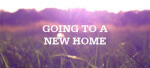 My Experience Moving To New Home By Bob Vogel