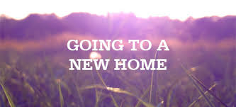 My Experience Moving To New Home