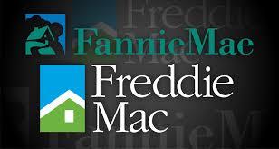 Should I Use Fannie Mae Or Freddie Mac?