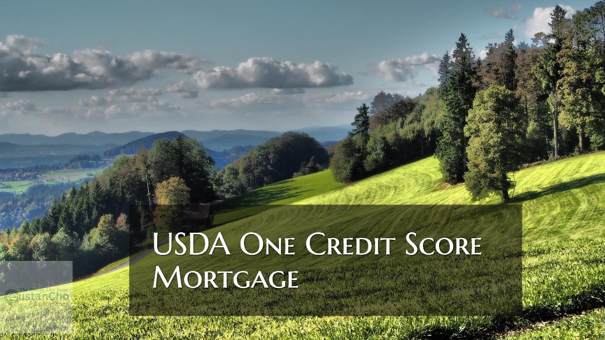 USDA One Credit Score Mortgage Guidelines On USDA Loans