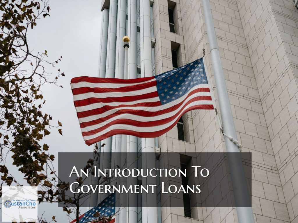 An Introduction To Government Loans