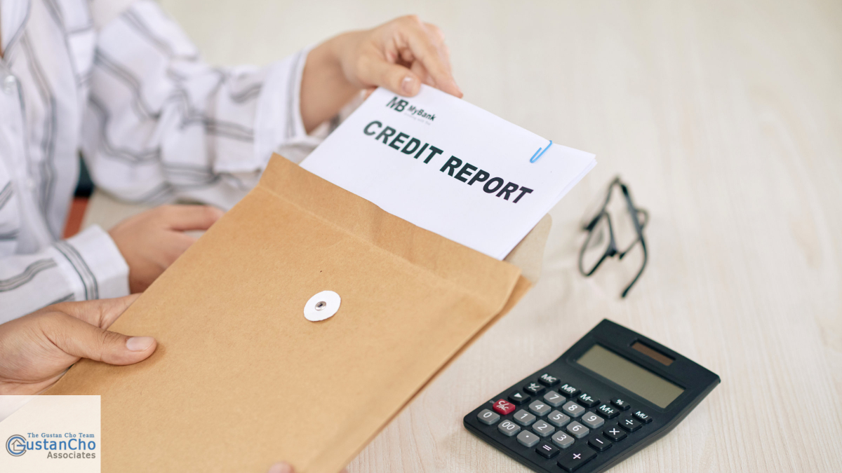 What is the analysis of credit results and credit report