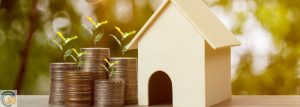 What are the conventional guidelines for investment houses